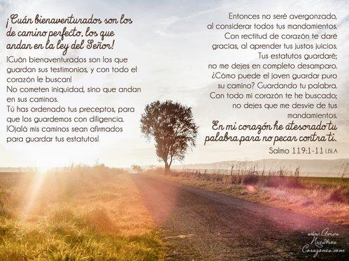 Enero 14   Salmo 119:1-11  desktop wallpaper