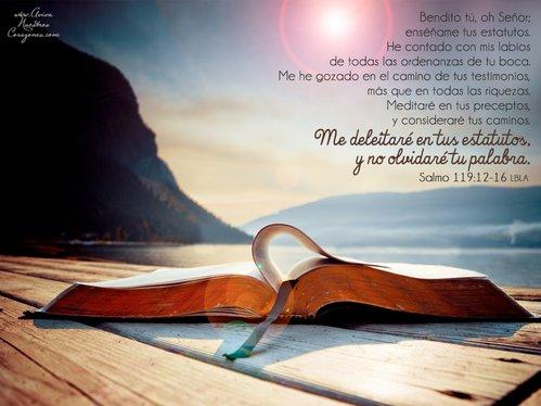 Feb 14   Salmo 119:12-16 desktop wallpaper