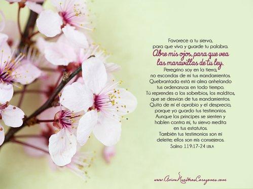 Mar 14 | Salmo 119:17-24 desktop wallpaper
