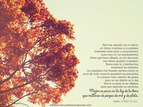 Sept. 14 | Salmos  desktop wallpaper